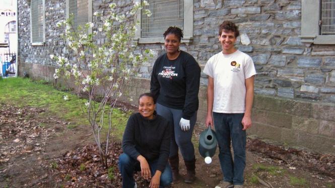 Proud Gardeners Church ave garden