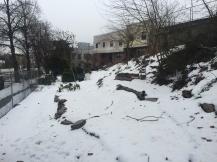 Farm under snow