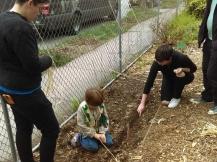 Planting help